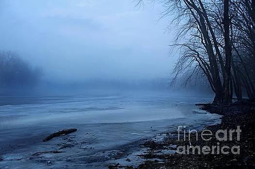 Foggy Blue II by Denise Irving