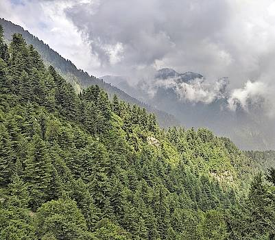 Foggy Green Mountains of Murree by Zahra Majid