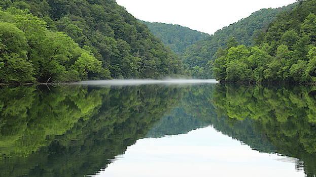 Foggy Lake Reflection by Jim Allsopp