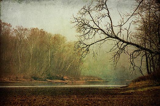 Foggy Morning by Annette Persinger