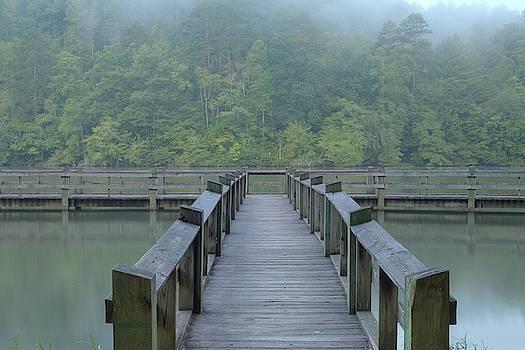 Foggy Morning at Chrokee Lake by Jim Allsopp
