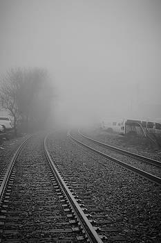 Foggy Tracks by Michael Hills