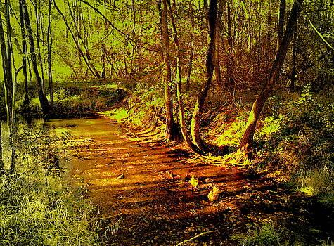Henryk Gorecki - Forest brook in the morning sun
