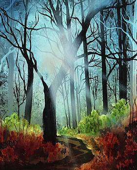 Forest Light Show by Sandra Day