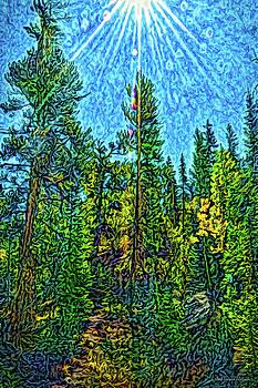 Forest Sunlit Grace by Joel Bruce Wallach