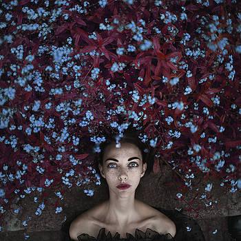 Forget Me Nots by Anka Zhuravleva