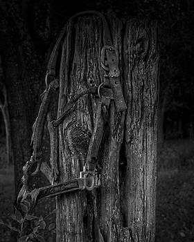 Forgotten 20180913 by Philip A Swiderski Jr