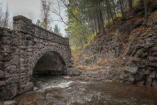 Susan Rissi Tregoning - Forgotten Bridge