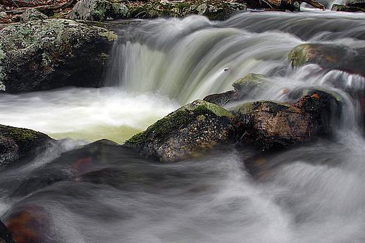 Dawn J Benko - Forked Brook Fall
