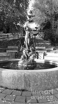 Fountain by Jeni Gray