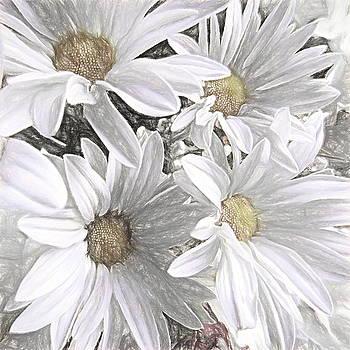 Four Daisies by Susan Lafleur