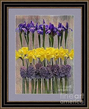 Framed Print Idea by Nina Silver