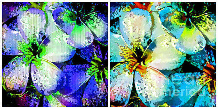 Frangipani Abstract Collage by Trudee Hunter