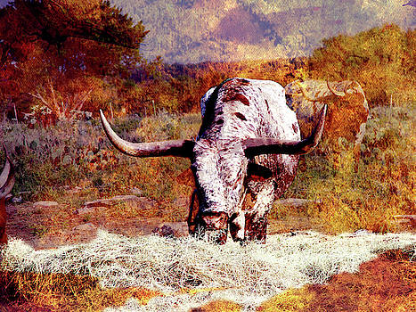 Freckles the Longhorn by Linda Cox