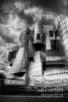 Frederick R Weisman Art Museum Frank Gehry University of Minnesota by Wayne Moran
