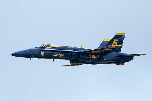 Blue Angel Freedom in the Air by Darrell Gregg