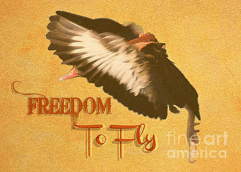 Diann Fisher - Freedom To Fly