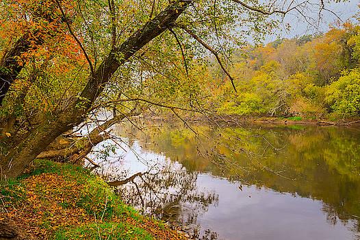 French Broad River by Tom Gresham
