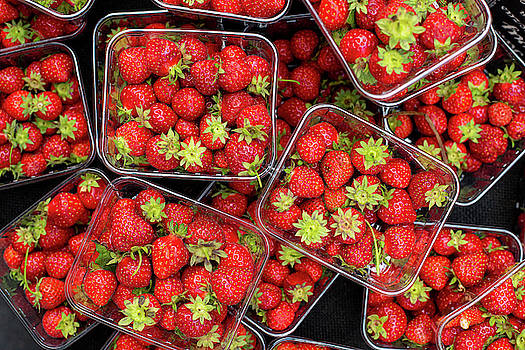 Fresh red Strawberry fruits by Michalakis Ppalis