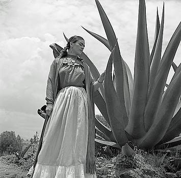 Frida Kahlo Standing Next To An Agave Plant by Toni Frissell