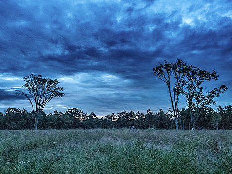 Louis Dallara - Friendship Blue Hour Sunrise