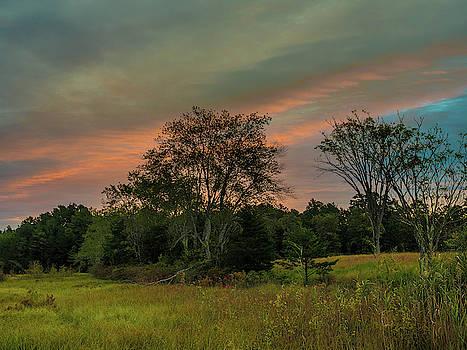 Louis Dallara - Pine Lands in Friendship Sunrise