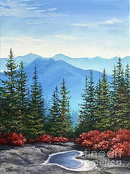 From Mt. Crawford With Love by Varvara Harmon
