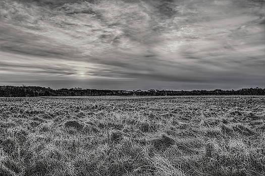 Dale Kauzlaric - Frosty Hay Field Black And White
