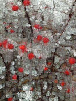 Frozen Berries by Jack Zulli