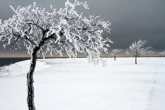 Lana Trussell - Frozen by Hefner