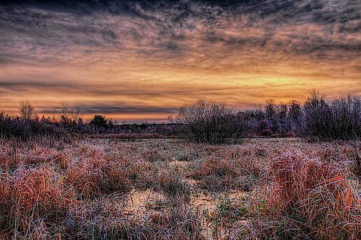 Dale Kauzlaric - Frozen Pond Sunrise