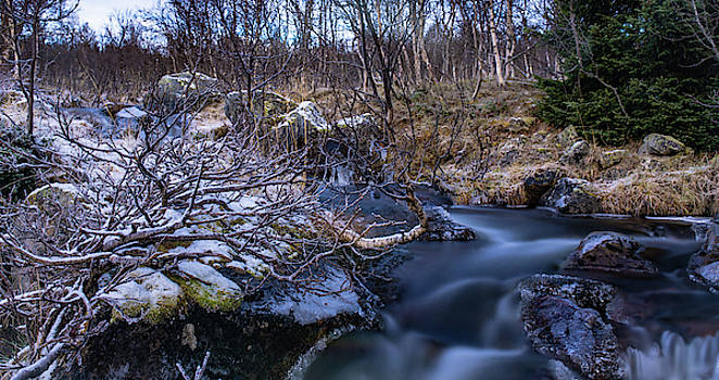 Frozen river and winter in forest by Kai Mueller