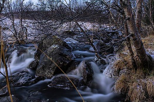 Frozen stream in winter forest by Kai Mueller
