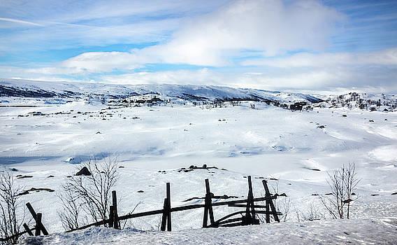 Frozen Ustevatnet Lake Hallingskarvet National Park Ustaoset Bus by Adam Rainoff