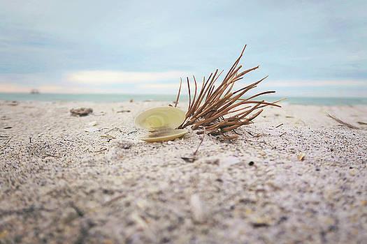 Ft Desoto Beach by Sue Collura