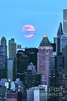 Regina Geoghan - Full Moon Blues NYC