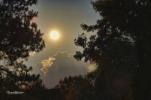 Full Moon In Spring by Paulette B Wright