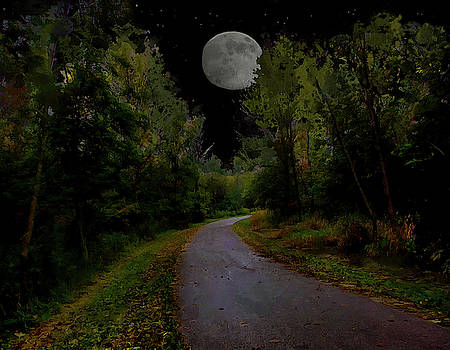 Full Moon Over Forest Trail by Cedric Hampton