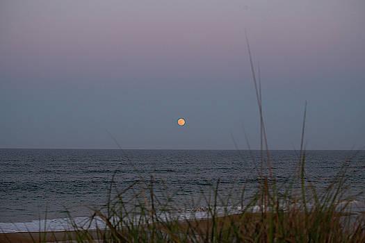 Full Moon Rising 10 by David Stasiak