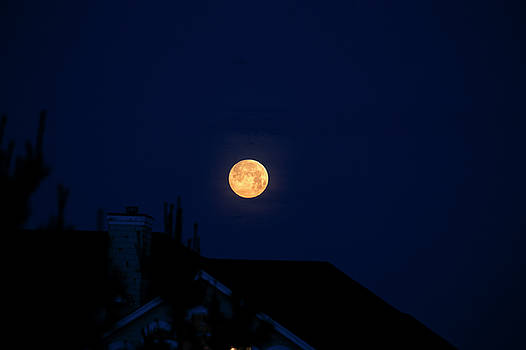 Full Moon Rising 4 by David Stasiak