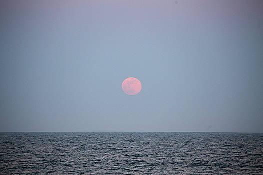 Full Moon Rising 6 by David Stasiak