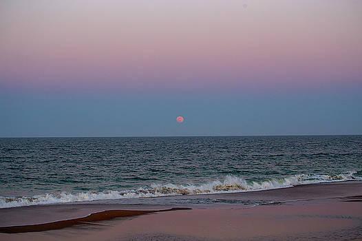 Full Moon Rising 7 by David Stasiak