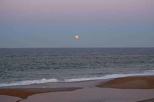 Full Moon Rising 8 by David Stasiak