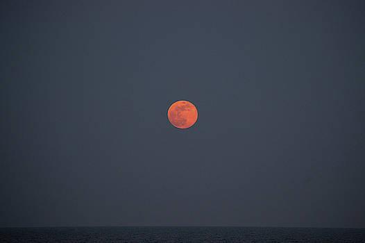 Full Moon Rising 9 by David Stasiak
