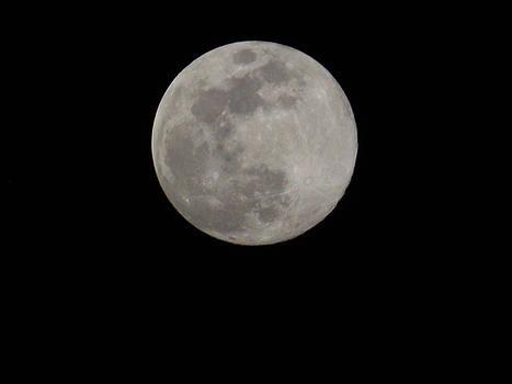 Full Moon Rising by Matthew Seufer