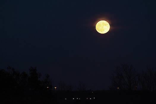 Full Moon Rising by Su Buehler