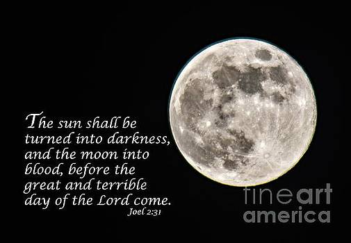 Full Moon Scripture Message by Cindy Treger