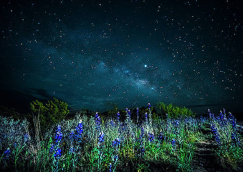 Galactic Bluebonnets by David Morefield