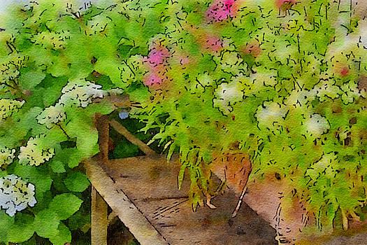 Bonnie Bruno - Garden Bench