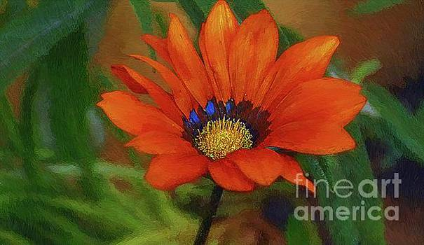 Garden Flower Impressionist by John Kolenberg